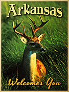 Arkansas Digital Art Metal Prints - Arkansas White Tailed Deer Metal Print by Vintage Poster Designs