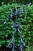 Armillary Framed Prints - Armillary in the Garden Framed Print by Douglas Barnett