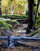 Sonoma Originals - Armstrong Woods by Richard  Willson
