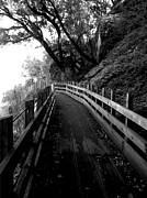 Black And White Acrylic Prints - Around the Bend by Leah Moore