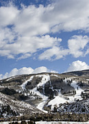 Rocky Mountains Prints - Arrowhead Mountain at Beaver Creek Resort - Colorado Print by Brendan Reals