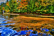 Fir Trees Photos - Arrowhead Park Waterway in Inlet New York by David Patterson