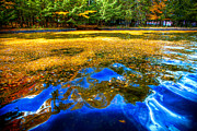 Adirondack Park Art - Arrowhead Park Waterway in Inlet New York II by David Patterson