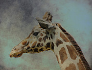 Africa Art Prints - Art Giraffe 2 Print by Mark Jordan