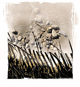 Beach Fence Mixed Media Posters - Art In The Sand Series 2 Poster by Bob Salo