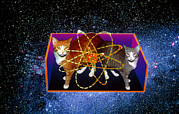 Quantum Mechanics Prints - Art Of Schrodingers Cat Experiment Print by Volker Steger