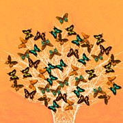 Subtle Colors Prints - Art style butterflies.3 Print by Susana Sanchez Giraud