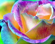 Artful Colorful Rose Print by Lorrie Morrison