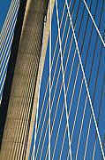 Arthur Ravenel Jr Bridge Framed Prints - Arthur Ravenel Jr. Bridge Cable Stay Shadows Framed Print by Dustin K Ryan