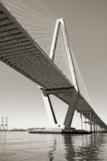 Suspension Posters - Arthur Ravenel Jr Bridge Charleston SC Cooper River Poster by Dustin K Ryan
