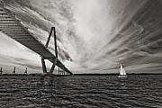 Charleston South Carolina Posters - Arthur Ravenel Jr. Bridge over the Cooper River Poster by Dustin K Ryan