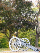 Artillery Gun Prints - Artillery Art Print by Staci-Jill Burnley
