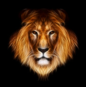 Fractalius Framed Prints - Artistic Lion Framed Print by Aimelle