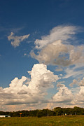 Prairie Sky Art Posters - Artists Clouds Poster by Toni Hopper