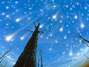 Meteor Shower Prints - Artwork Of A Meteor Shower Print by D. Van Ravenswaay