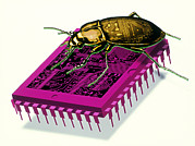 Artwork Of Millennium Bug With Beetle On Microchip Print by Victor Habbick Visions
