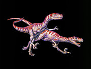 Deinonychus Prints - Artwork Of Two Deinonychus Dinosaurs Print by Joe Tucciarone