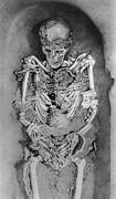Palaeolithic Prints - Artwork: Palaeolithic Skeleton From Sunghir,russia Print by Ria Novosti