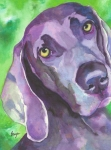 Custom Dog Portrait Paintings - Arwen by Brazen Edwards