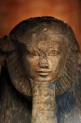 Orange Beards Prints - As A Sphinx, Hatshepsut Displays Print by Kenneth Garrett