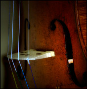 Violin Digital Art Metal Prints - As Beauty Sounds  Metal Print by Steven  Digman