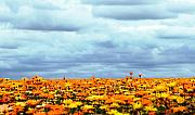 Sun Flowers Framed Prints - As Far As The Eye Can See Framed Print by Rebecca Cozart