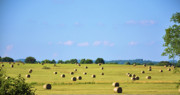 Tennessee Hay Bales Metal Prints - As Far As You Can See Metal Print by Jan Amiss Photography