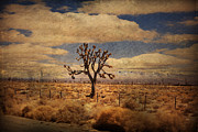 Textured Landscapes Digital Art - As We Go Down Lifes Lonesome Highway by Laurie Search