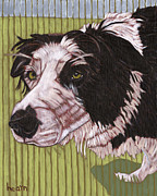 Pet Originals - Asa Herds at the Drop of a Hat by David  Hearn