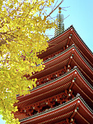 Korean Framed Prints - Asakusa Temple In Tokyo, Japan Framed Print by Austin Ng