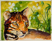 Sydney Zmitrewicz - Asian Golden Cat