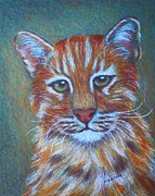Wild Cats Paintings - Asiatic Golden Cat by Margaret Saheed