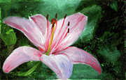 Green Oil Paintings - Asiatic Lily by Gary Deslauriers