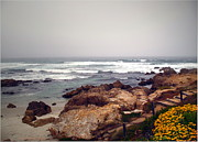 Joyce Dickens Metal Prints - Asilomar Beach Pacific Grove CA USA Metal Print by Joyce Dickens