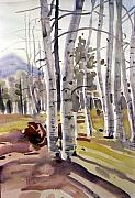 Aspen Prints - Aspen 77 Print by Donald Maier