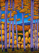 Birch Trees Paintings - Aspen Country II by Johnathan Harris