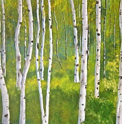 Heather Matthews - Aspen forest