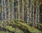 Shimmering Paintings - Aspen Forest by Zanobia Shalks