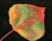 Dew Pastels Prints - Aspen Leaf in Fall Print by Ginny Neece