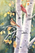 Red Cardinals Framed Prints - Aspen Light Framed Print by Patricia Pushaw