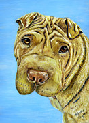 Dog Art Framed Prints - Aspen - Shar Pei Framed Print by Michelle Wrighton