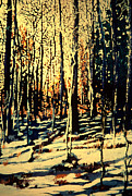 Snowy Landscape Mixed Media Posters - Aspen Sunrise Poster by Randy Patton