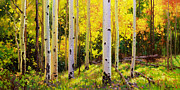 Fall Leaves Painting Prints - Aspen Symphony Print by Gary Kim