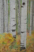 Laurel Thomson Art - Aspens and Bracken by Laurel Thomson