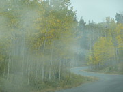 Outlook Photos - Aspens and Misty Road by Angela Hansen