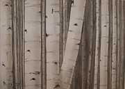Laurel Thomson Prints - Aspens No. 2 Print by Laurel Thomson