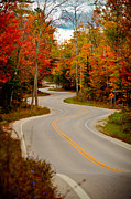Winding Road Posters - Asphalt Creek in Door County Poster by Shutter Happens Photography