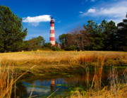 Chincoteague Framed Prints - Assateague Lighthouse Reflection Framed Print by Nick Zelinsky