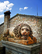Assisi Italy - Lion Statue Print by Gregory Dyer