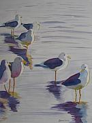 Armitage Prints - Assorted Gulls Print by Jenny Armitage